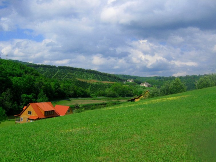 greenery_scenery_by_lafillesauvage