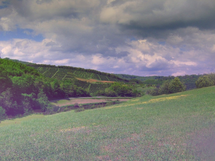 greenery_scenery_by_lafillesauvage2
